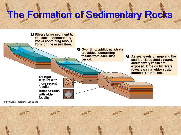Sedimentary Rock Formation - Lessons - Tes Teach